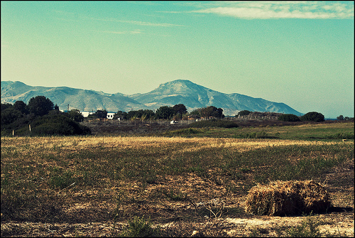 Landscapes of Kos